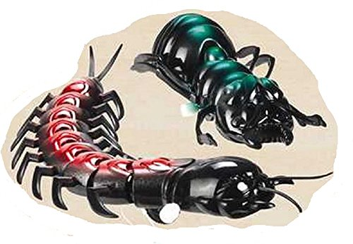Really Really Big Bugs - Pair of Wind-up Insects - Colors (Giant Bug)