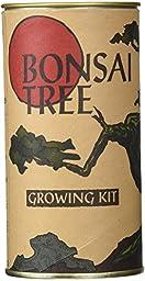 Bonsai Tree Growing Kit by Jonsteen Company