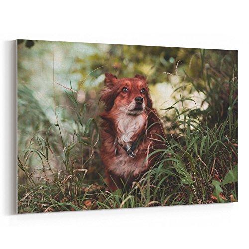 Westlake Art - Dog Canine - 24x36 Canvas Print Wall Art - Ca