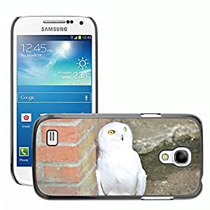 GoGoMobile Slim Protector Hard Shell Cover Case // M00124406 Snowy Owl White Owl Animal Bird // Samsung Galaxy S4 Mini i9190