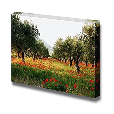 Canvas Prints Wall Art - Olive Trees on a Carpet of Poppies - 24