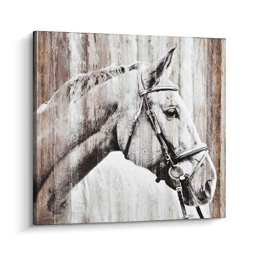 - Pi Art Horse Painting Modern Wall Art, Hand Painted on Canvas Print Home Decor Stretched and Framed Ready to Hang (24x24 inch, A)