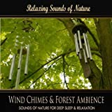 Wind Chimes & Forest Ambience