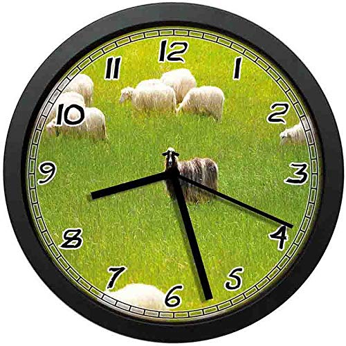 Black Sheep Between White Goats on Grass Field Meadow Animal Farm Landscape Wall Clock Nice for Gift or Office Home Unique Decorative Clock Wall Decor 12in with Frame