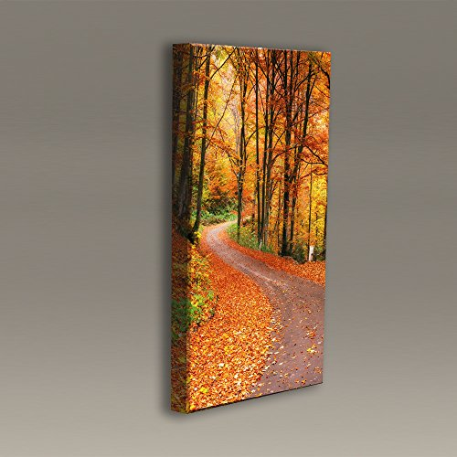 Acoustimac printed Acoustic Panel: 3'x2'x2'' - Fall Trail by AcousticART