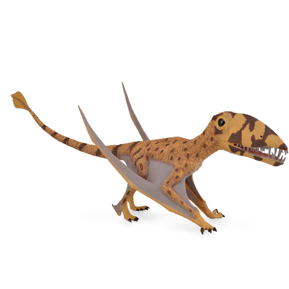 Tachan- Dimorphodon con Mandibula Movil, (88798): Amazon.es ...