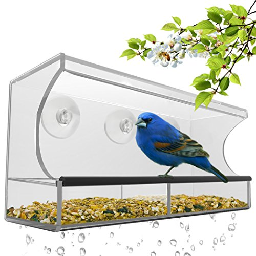 Nature's Hangout Window Bird Feeder with Removable Tray, Drain Holes and 3 Free Extra Suction Cups. Large Size, 100% Clear Acrylic. Easy to Clean. Great Gift. Guaranteed For All Weather (Feeder Window Bird Clear)