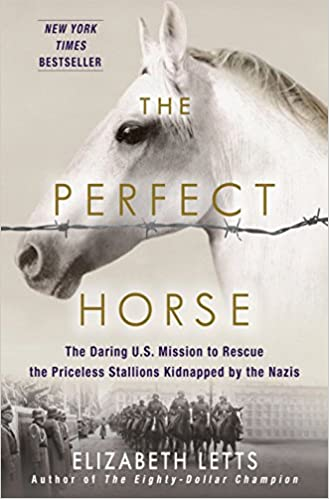 Image result for perfect horse letts book cover