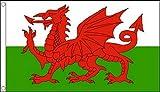 Flag Wales Welsh Dragon 5'x3′ (150cm x 90cm) Heavy Duty Nylon
