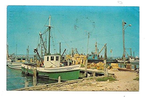Shinnecock Bay, Long Island, New York Vintage Postcard N5655