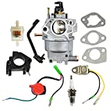 Panari 0J2451 Carburetor + Air Filter Spark Plug for Generac 5000...