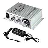 Lepy LP-2020A Power Amplifier Stereo HiFi Digital Audio Car Auto Motor Amp with 5A Power Supply Silver