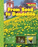 From Seed to Dandelion, Ellen Weiss, 0531187926