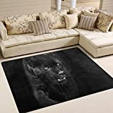 "SAVSV Large Area Rugs 5'3"" x 4',Black Panther In Dark Printed,Lightweight Non Slip Floor Carpet For Living Room Bedroom Home Deck Patio"