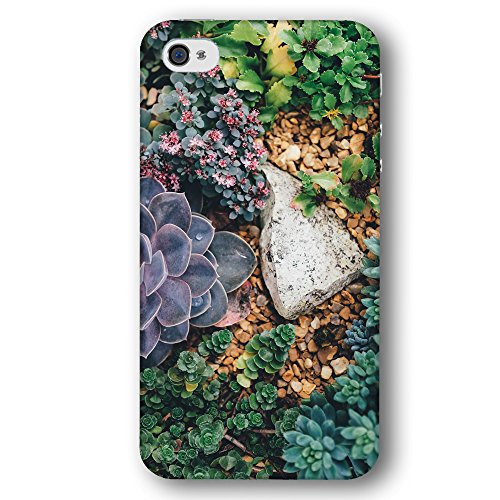 Cooliphone4Cases.com-2576-Succulent Succulents Bloom in Green Purple and Brown Apple iPhone 4 / 4S Phone Case-B01LXTRGQ5-T Shirt Design