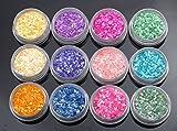 Crash shell powder 12 color set [light colored, shell] resin nail art for the powder trading