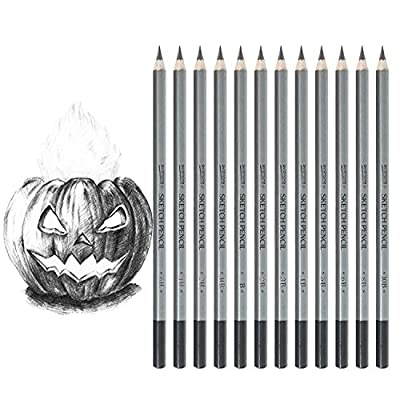 Dyvicl Art Sketching Pencils Set - 12 Pieces Drawing Pencils 10B, 8B, 6B, 5B, 4B, 3B, 2B, B, HB, 2H, 4H, 6H Graphite Pencils for Adults & Kid Artists