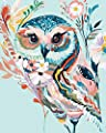DoMyArt Acrylic Paint by Number Kit On Canvas for Adults Beginner - Rainbow Owl 16X20 Inch