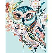 DoMyArt Acrylic Paint by Number Kit On Canvas for Adults Beginner - Rainbow Owl 16X20 Inch