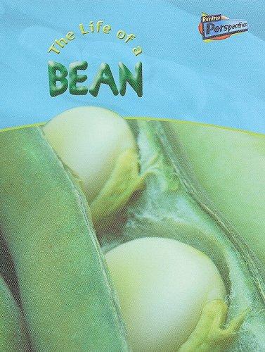 Download Life of a Broad Bean (Life Cycles) pdf