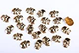 50 Gold Metal HOT FIX Skull Studs stick on Embellishments,PUNK,GOTH,DIY FASHION
