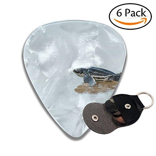 Sea Turtle 351 Shape Classic Guitar Picks (6 Pack) For Electric Guitar, Acoustic Guitar, Mandolin, And - John Way Airport