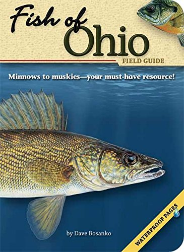 Fish of Ohio Field Guide (Fish Identification Guides)