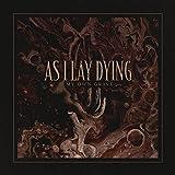 Kyпить My Own Grave (Single) на Amazon.com