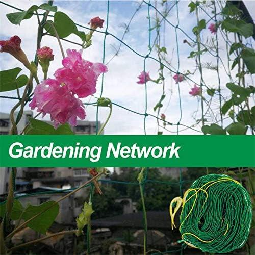Dizie Netz f/ür Kletterpflanzen f/ür Garten Halterung f/ür Kletterpflanzen aus Kunststoff Rankhilfe 1,8 x 1,8 m
