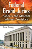 Federal Grand Juries: Aspects and Material Witness Provisions (Government Procedures and Operations)