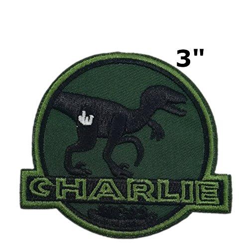 Jurassic World CHARLIE Raptor Dinosaurs Movie Park 3