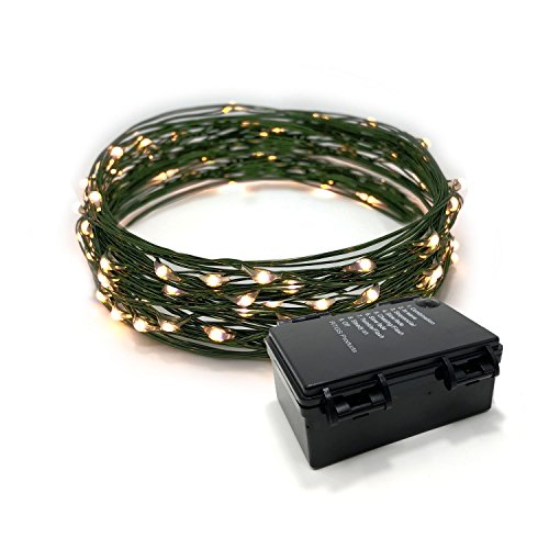 Mini Centerpiece Christmas Green (RTGS Products LED String Lights on Green Wire Indoor and Outdoor String Lights, Fairy Lights for Patio, Bedroom, Holiday Decor, etc (WARM WHITE COLOR 60 LEDs 20 FEET))