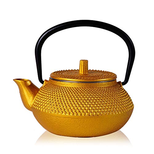 Kays Teapot Cast Iron Teapot Japanese Style Tetsubin Tea Kettle Cast Iron Hobnail Teapot 0.3L (300ML), High grade Kung Fu Tea Set (Color : Gold)