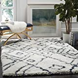 Safavieh Toronto Shag Collection SGT727K Ivory and Blue Handmade Area Rug (5′ x 8′) Review