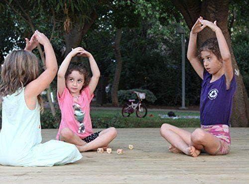 Amazon.com: YOGi FUN Bundle - Juego de dados de yoga y libro ...