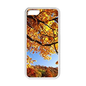 Personalized Creative Cell Phone Case For iPhone 4/4s,yellow forest glam autumn view