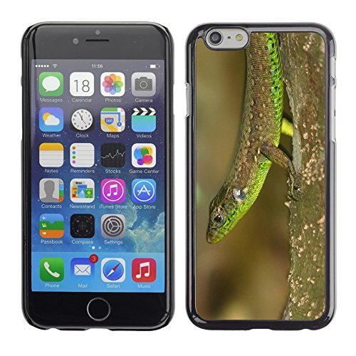 "Premio Sottile Slim Cassa Custodia Case Cover Shell // V00003397 h majidi // Apple iPhone 6 6S 6G PLUS 5.5"""