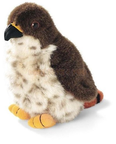 (Red-Tailed Hawk - Audubon Plush Bird (Authentic Bird Sound))