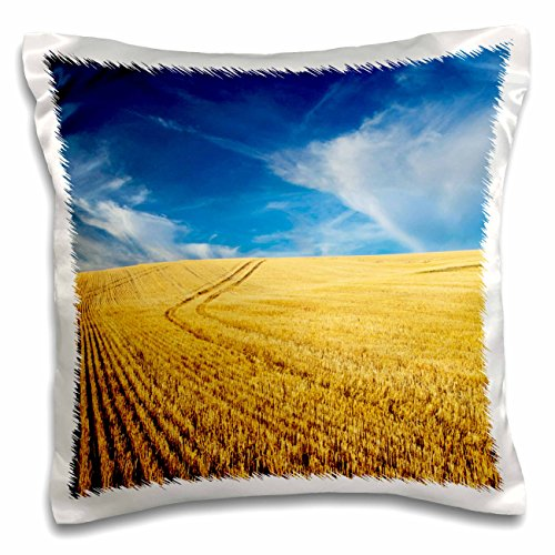 Danita Delimont - Farms - Farm Fields, Harvest Wheat, Palouse, Washington, USA - US48 TEG0425 - Terry Eggers - 16x16 inch Pillow Case (pc_148727_1)