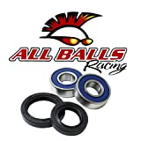 Power Sport Industries All Balls Wheel Bearing and Seal Kit 25-1384