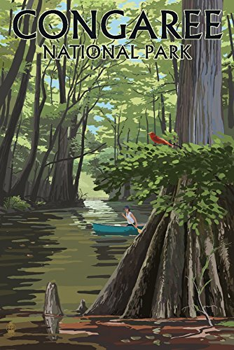 Congaree National Park, South Carolina - River View (9x12 Fine Art Print, Home Wall Decor Artwork Poster)