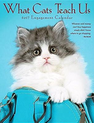 2017 What Cats Teach Us Engagement Calendar