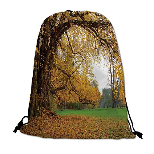(Fall Lightweight Drawstring Bag,Autumnal Park with Big Ancient Oak Tree and Deciduous Leaves Greenery for Travel)