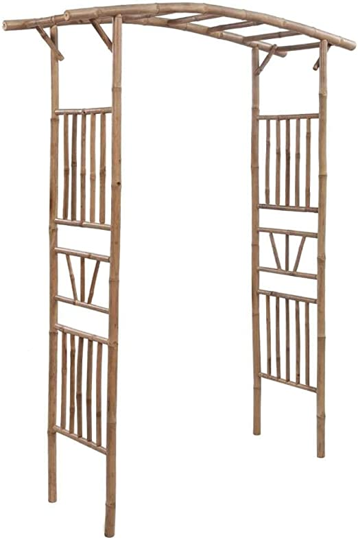 vidaXL Arco de Rosas y Trepadoras de Bambú 145x40x187 cm Puerta ...