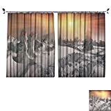DESPKON Active Printing Fabric Polyester Material a Severe Bad Weather threatening,Menacing and Frightening Ukraine Karpaty Montenegrin for Cartoon Children's Room W108 x L108