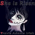 She Is Risen: The Gun Control Case Studies | Travis Adams Irish