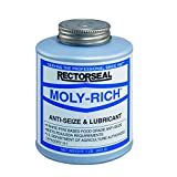 Rectorseal 71431 1-Pound Moly-Rich Antiseize And Lubricant