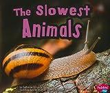 The Slowest Animals, Catherine Ipcizade, 1429662093