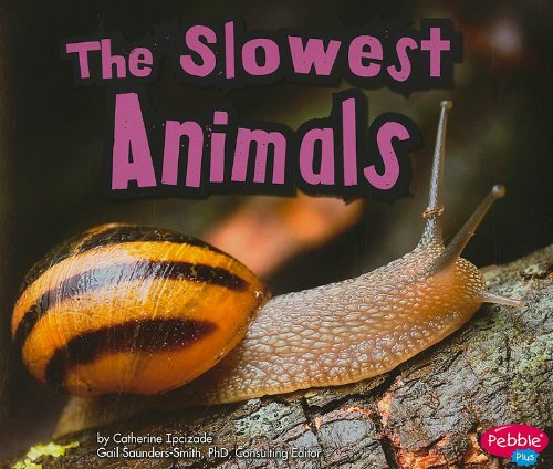 Read Online The Slowest Animals (Extreme Animals) pdf