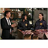 Bones David Boreanaz as Agent Booth Hand Up and Tamara Taylor as Dr. Camille Saroyan Head Turned and Emily Deschanel as Dr. Temperance Bones Brennan Standing Behind Bloody Filled Boxes 8 x 10 Photo